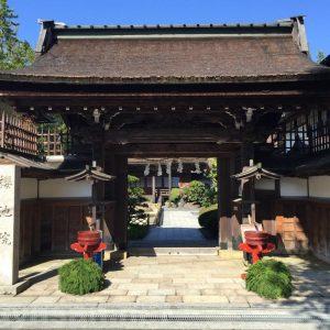 高野山の宿坊ガイド | 桜池院の歴史と魅力